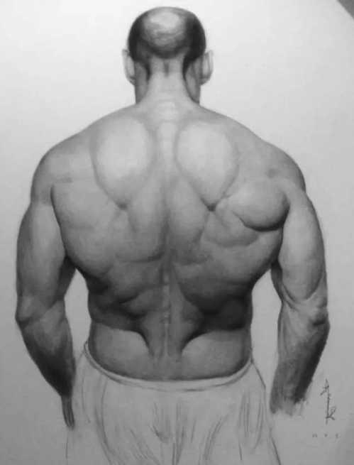 巨石强森素描 叫杰森斯坦森的背
